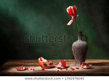 Light green background with tulips Stock photo © nurrka