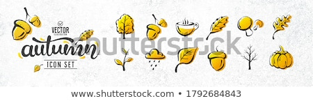 Autumn Grunge Stock photo © naffarts