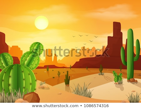 summer vector background   grass birds and sunset stock photo © orson