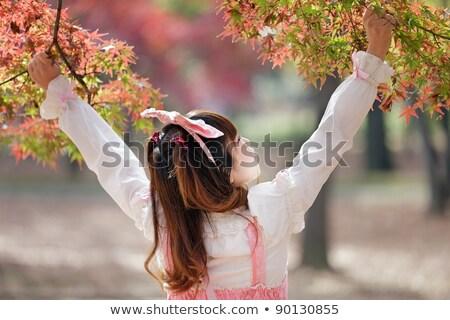 Japonês doce outono cenário menina cosplay Foto stock © smithore