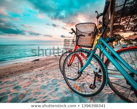 couple stood on the beach stock photo © photography33