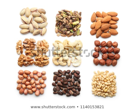 The nut. Square composition. Stock photo © moses