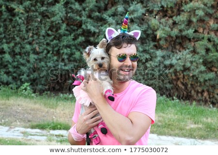 Terrier Jesters stock photo © michelloiselle