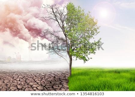 美しい 風景 ダイナミック 表示 汚染 ストックフォト © smithore
