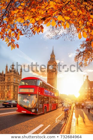 autumn politics stock photo © michelloiselle
