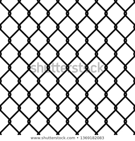 Fence Patterns Stock photo © michelloiselle