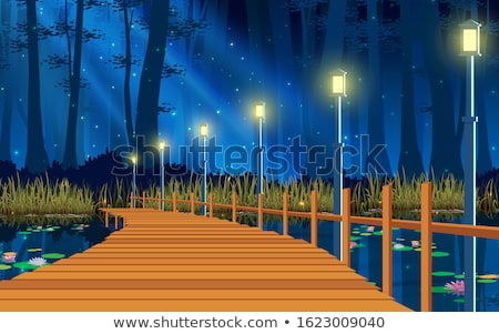 wood bridge at night stock photo © witthaya