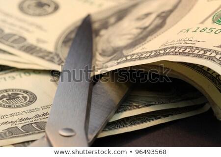 bütçe · kesmek · metin · makas - stok fotoğraf © mscottparkin