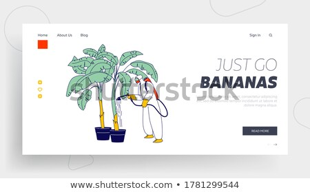 Worker planting trees abroad Stock photo © photography33
