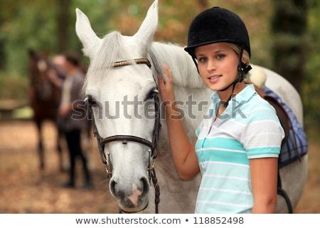 grzbiet · koński · kobieta · zwierząt · młodych · konie - zdjęcia stock © photography33