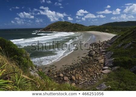 Brezilya bal ada arazi iki Stok fotoğraf © swimnews
