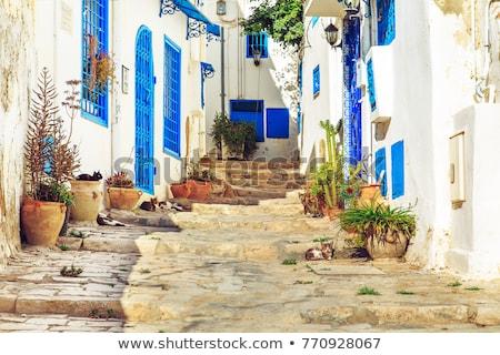 Blu porte bianco muro Tunisia finestra Foto d'archivio © 5xinc