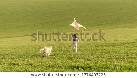 cute · petite · fille · chien · ami · animal · fleur - photo stock © gekaskr