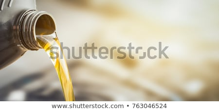 Oil and Petroleum. Stock photo © tashatuvango