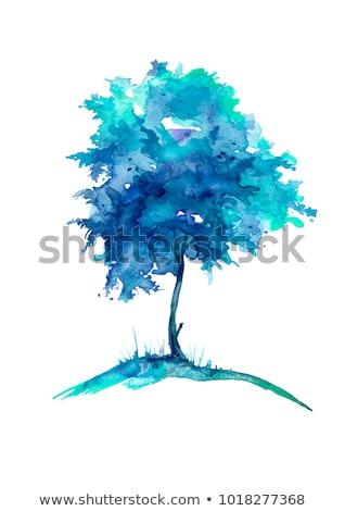 Ceniza solitario árbol montana resumen grande Foto stock © vavlt