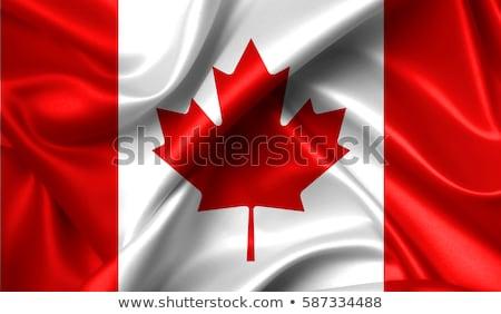 Канадский · флаг · Blue · Sky · волны · сильный · ветер - Сток-фото © creisinger