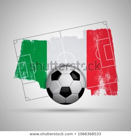 サッカーボール イタリア フラグ ピッチ サッカー 世界 ストックフォト © stevanovicigor