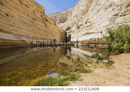 tourists pass a water source stock photo © oleksandro