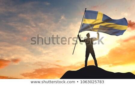 Backlit swedish flag stock photo © olandsfokus