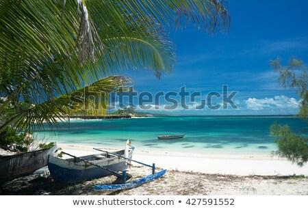 nublado · alga · Madagáscar · indiano · oceano · montanha - foto stock © lkpro