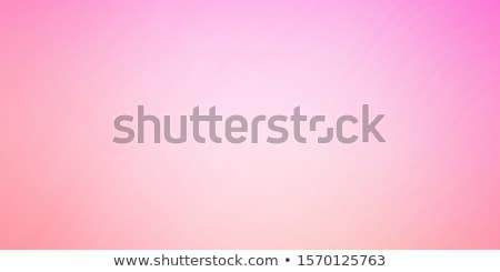 抽象的な 曲線 ピンク 行 テクスチャ 背景 ストックフォト © Kheat