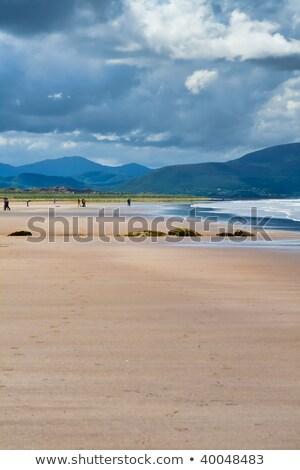 plaży · fale · wybrzeża · Irlandia · ocean - zdjęcia stock © igabriela