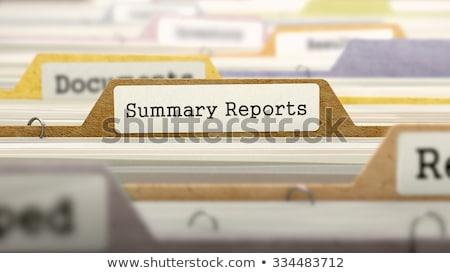 folder in catalog marked as summary reports stock photo © tashatuvango