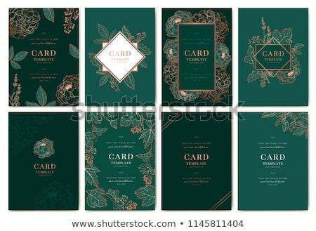 Esmeralda cartão ilustração listrado verde Foto stock © derocz