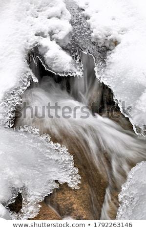 зима · реке · воды · лес · природы · снега - Сток-фото © jarin13