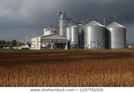 Grain silos on cloudy day Stock photo © stevanovicigor