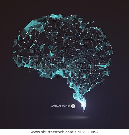 Neurônio cérebro conexão árvore humanismo cabeça Foto stock © Lightsource