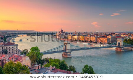 Budapest and Danube river. Stock photo © kyolshin