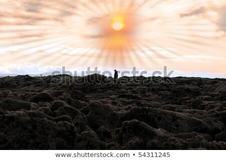 Egyedüli férfi sétál tengerpart kövek Írország Stock fotó © morrbyte