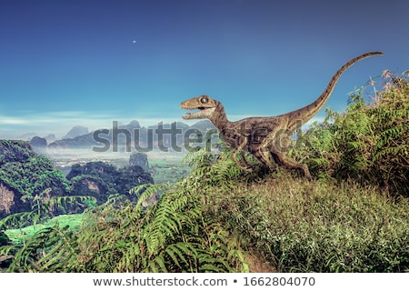 Velociraptor Stock photo © bluering
