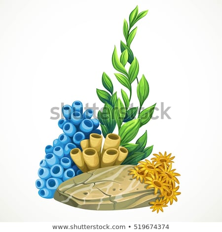 coral stone and coral reef underwater on light Stock photo © bank215