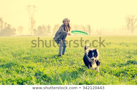 woman playing with dog outdoors stock photo © deandrobot