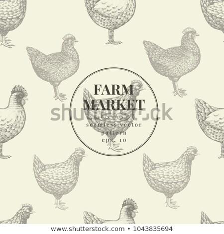 hen in the kitchen Stock photo © adrenalina