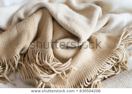 Warm beige blanket texture Stock photo © stevanovicigor
