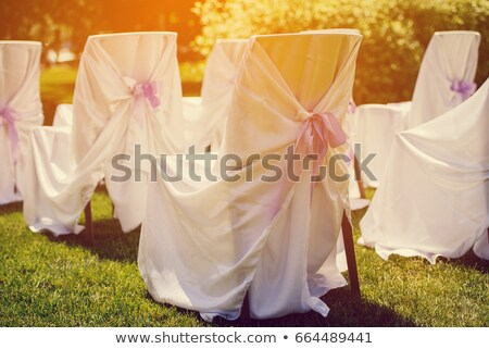 Chairs for the ceremony with white satin cape and purple ribbon  Stock photo © d_duda