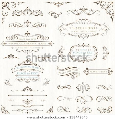 vintage · casamento · quadro · flor · papel · projeto - foto stock © bedlovskaya