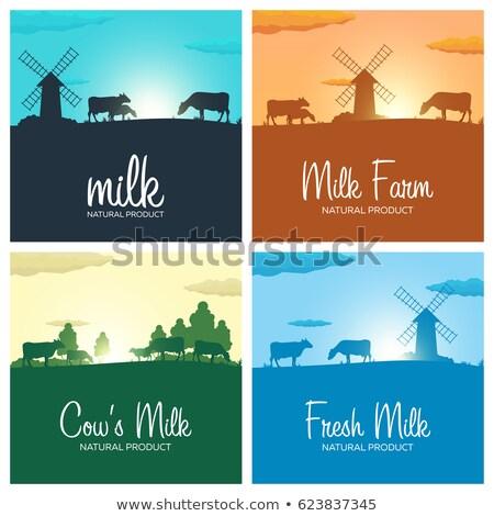 Conjunto leite banners naturalismo produto Foto stock © Leo_Edition