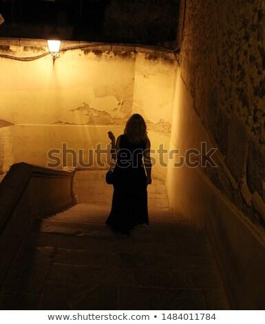 mysterious woman on the night city background stock photo © konradbak