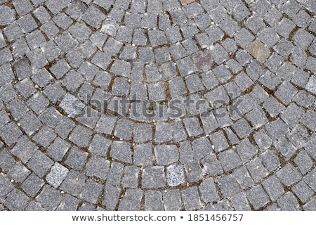 Dirty grunge paved footpath texture Stock photo © stevanovicigor
