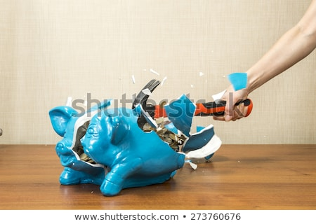 Woman breaking piggy bank for savings Stock photo © Elnur