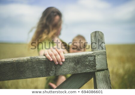 Children on gate in countryside Stock photo © IS2