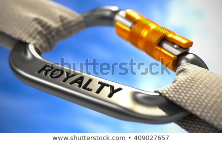 Chrome Carabiner Hook with Text Royalty. Stock photo © tashatuvango