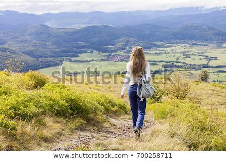férfi · lefelé · kapualj · divat · utazás · szín - stock fotó © is2