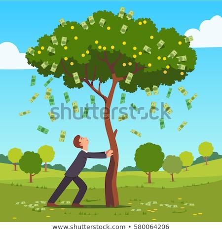 Сток-фото: бизнеса · шаблон · Денежное · дерево · иллюстрация · дерево · весны