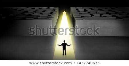 Businessman going straight on two dark mazes Stock photo © ra2studio