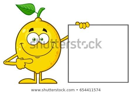 Glimlachend Geel citroen vers fruit groen blad cartoon mascotte Stockfoto © hittoon